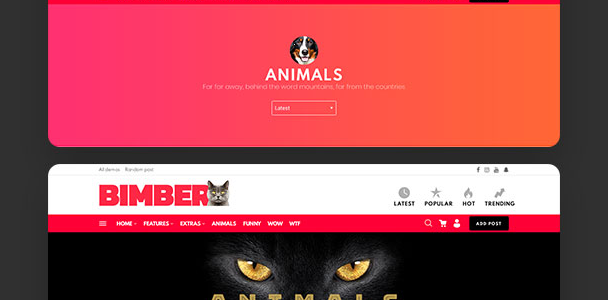Download Bimber Version 5.6 Free Viral WP Magazine Theme