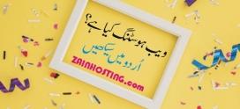 What is Web Hosting in Urdu?