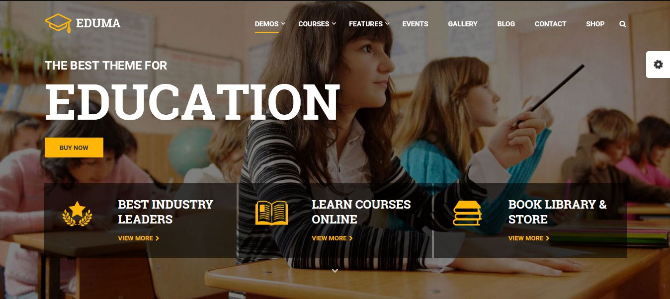 wordpress theme for education site